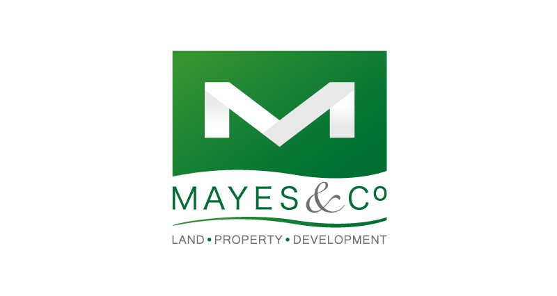 Mayes & Co Logo Design