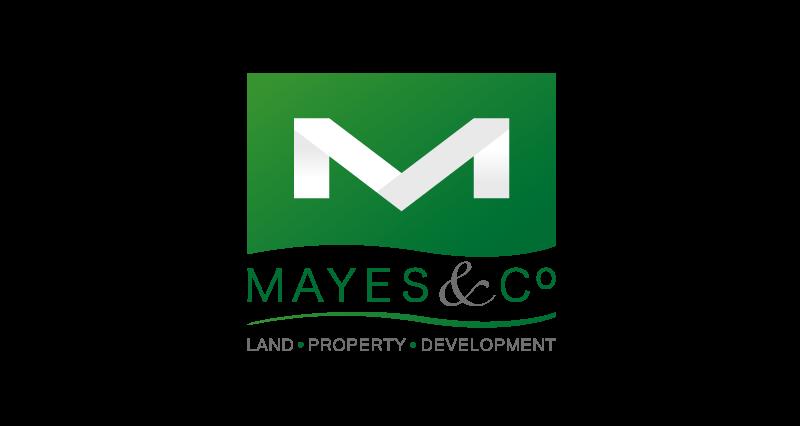 Mayes & Co Logo Design